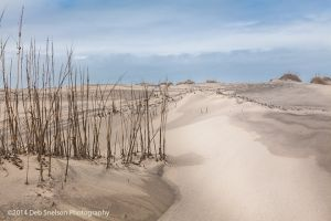 A Walk to the Beach at Outer Banks North Carolina.jpg