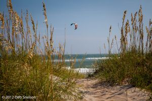 Cape Hatteras Wind Surfing Outer Banks North Carolina NC OBX.jpg