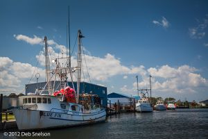 Fishing boats Wanchese Harbour Roanoke Island Outer Banks North Carolina.jpg