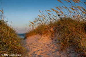 Salvo Dune access to beach sunset Outer Banks North Carolina 2.jpg