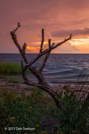 Sunset on the Sound Pamlico Sound Outer Banks Salvo Beach  North Carolina NC.jpg